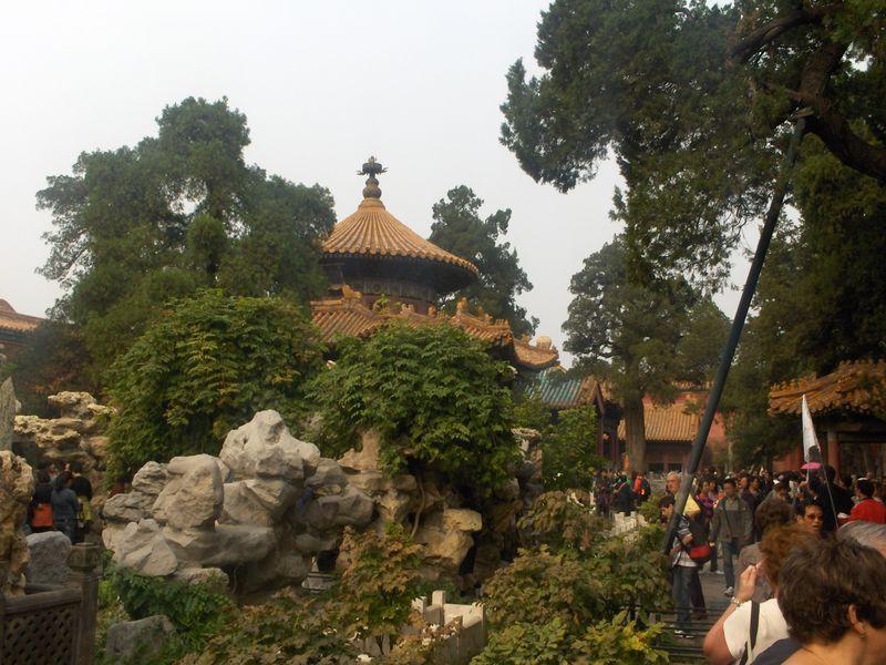 Devon Forbidden City 020