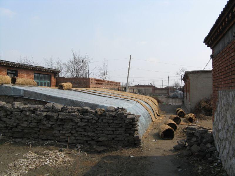 Tangshan 069