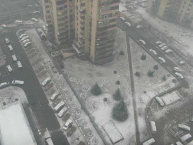 Snow_and_lush_003