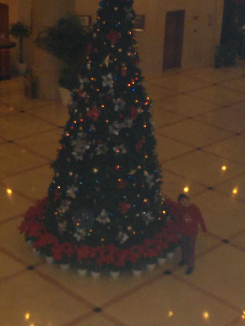 Christmas_2007_007