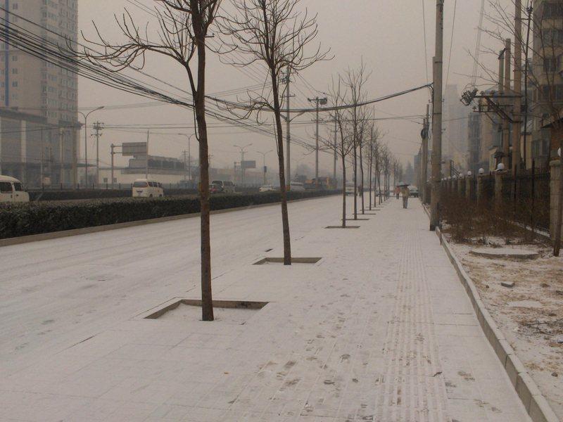Snow_005
