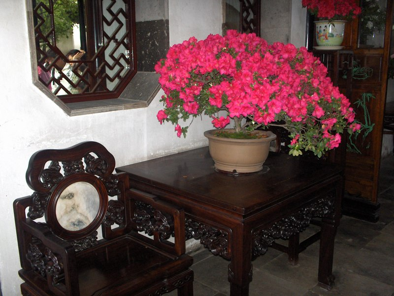 Suzhou_038