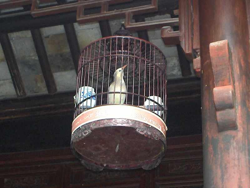 Suzhou_062